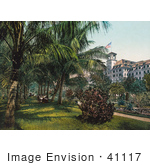 #41117 Stock Photo Of Guests Sitting Under Palms In The Gardens Of The The Royal Poinciana Hotel In Palm Beach Florida