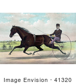 #41320 Stock Illustration Of A Horse Champion Pacer Johnston By Bashaw Golddust Raced By Peter V Johnston
