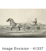 #41337 Stock Illustration Of A Harness Racer Driving A Trotting Horse