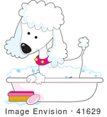 #41629 Clip Art Graphic Of A Bathing White Poodle In A Tub