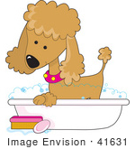 #41631 Clip Art Graphic Of A Bathing Apricot Poodle In A Tub