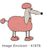 #41676 Clip Art Graphic Of A Prissy Pink Poodle In Profile