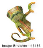#43163 Royalty-Free (Rf) Clipart Illustration Of A 3d Lizard Chameleon Mascot Looking Around A Blank Sign - Pose 1
