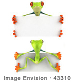 #43310 Royalty-Free (Rf) Illustration Of Front And Back Views Of A 3d Red Eye Tree Frog Holding A Blank Sign