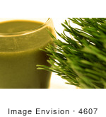 #4607 Wheatgrass and Juice by Jamie Voetsch