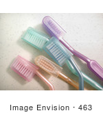 #463 Photo of Toothbrushes by Jamie Voetsch