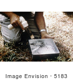#5183 Stock Photography Of A Researcher Removing Mosquitoes With A Mechanical Aspirator From The Tray Of A Horse Stable Mosquito Trap
