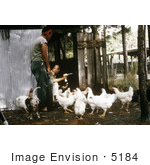 #5184 Stock Photography Of A Researcher Using A Mechanical Aspirator To Collect Mosquitos From Behind A Chicken Coop