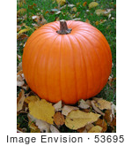#53695 Royalty-Free Stock Photo Of Fall Pumkin On The Grass