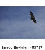 #53717 Royalty-Free Stock Photo Of A Bat