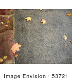 #53721 Royalty-Free Stock Photo Of A Autumn Sidewalk