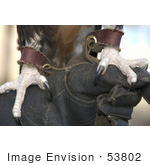 #53802 Royalty-Free Stock Photo Of A Close Up Of An Eagle&Rsquo;S Claws With Harness
