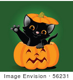 #56231 Royalty-Free (RF) Clip Art Illustration Of A Cute Black Kitten Reaching Its Paw Out Of A Halloween Pumpkin by pushkin