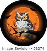 #56274 Royalty-Free (RF) Clip Art Halloween Owl Perched On A Bare Branch In Front Of An Orange Full Moon With Bats by pushkin