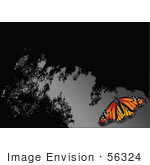 #56324 Royalty-Free (Rf) Clip Art Illustration Of A Monarch Butterfly On A Reflective Gray And Black Surface