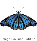 #56427 Royalty-Free (Rf) Clip Art Illustration Of A Spanned Blue Monarch Butterfly