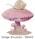 #56443 Clip Art Illustration Of A Snail Wandering On Top Of A Pink Mushroom