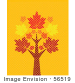 #56519 Royalty-Free (Rf) Clip Art Illustration Of A Tall Autumn Maple Tree On Turquoise