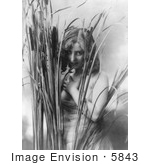#5843 Woman Behind Cattails