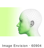 #60904 Royalty-Free (Rf) Illustration Of A Futuristic Wire Frame Female Head Diagram Looking Left - Version 2