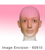 #60910 Royalty-Free (Rf) Illustration Of A Futuristic Wire Frame Female Head Diagram Looking Forward - Version 2