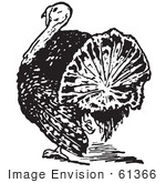 #61366 Retro Clipart Of A Vintage Thanksgiving Turkey Bird From The Rear In Black And White - Royalty Free Vector Illustration