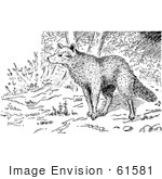 #61581 Clipart Of A Wolf In The Forest In Black And White - Royalty Free Vector Illustration