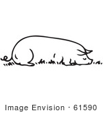 #61590 Clipart Of A Sow Resting Eating In Black And White - Royalty Free Vector Illustration