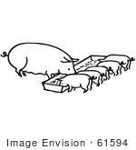 #61594 Clipart Of A Sow And Piglets Eating In Black And White - Royalty Free Vector Illustration