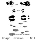 #61661 Clipart Of Bear Deer Moose Caribou And Rabbit Tracks In Black And White - Royalty Free Vector Illustration