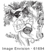 #61694 Clipart Of A Retro Woman Picking Apples From A Tree In Black And White - Royalty Free Vector Illustration