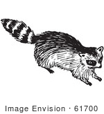 #61700 Clipart Of A Raccoon In Black And White 2 - Royalty Free Vector Illustration