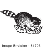 #61703 Clipart Of A Raccoon In Black And White - Royalty Free Vector Illustration