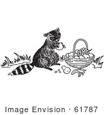 #61787 Clipart Of A Raccoon Eating Fruit From A Basket In Black And White - Royalty Free Vector Illustration