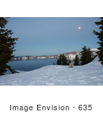 #635 Image Of Evergreens Framing Crater Lake Under A Full Moon
