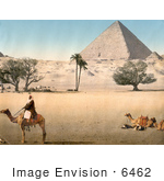 #6462 Bedouins By The Pyramids Of Giza