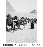 #6490 Bedouin Caravan At The Egyptian Pyramids