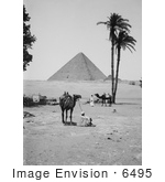 #6495 Great Pyramid And Sphinx In Giza
