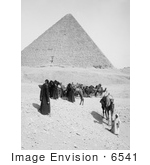 #6541 Caravan Of Bedouins By The Egyptian Pyramids