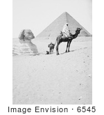 #6545 Men With Camels Near The Great Sphinx And Pyramids