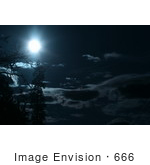 #666 Picture Of The Full Moon With Trees And Clouds