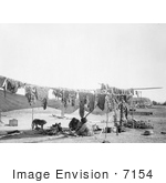 #7154 Stock Image: Sioux Indians Cutting And Drying Meat
