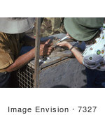 #7327 Picture of a Health Officials Extracting a Blood Sample from a Green Monkey, Cercopithecus Aethiops, During a Marburg Virus Investigation by KAPD