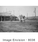 #8038 Picture Of Wild West Polo Coney Island