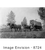 #8724 Picture Of A Horse Drawn Wagon