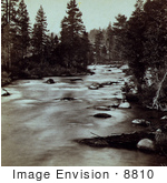 #8810 Picture Of The Truckee River