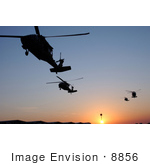 #8856 Picture Of Uh-60 Black Hawk Helicopters