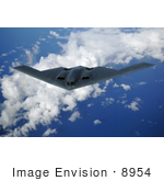 #8954 Picture Of A B-2 Spirit