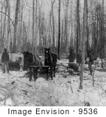 #9536 Picture Of Logging In A Forest