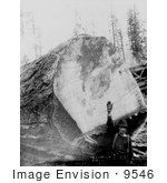#9546 Picture Of A Man By A Fir Log
